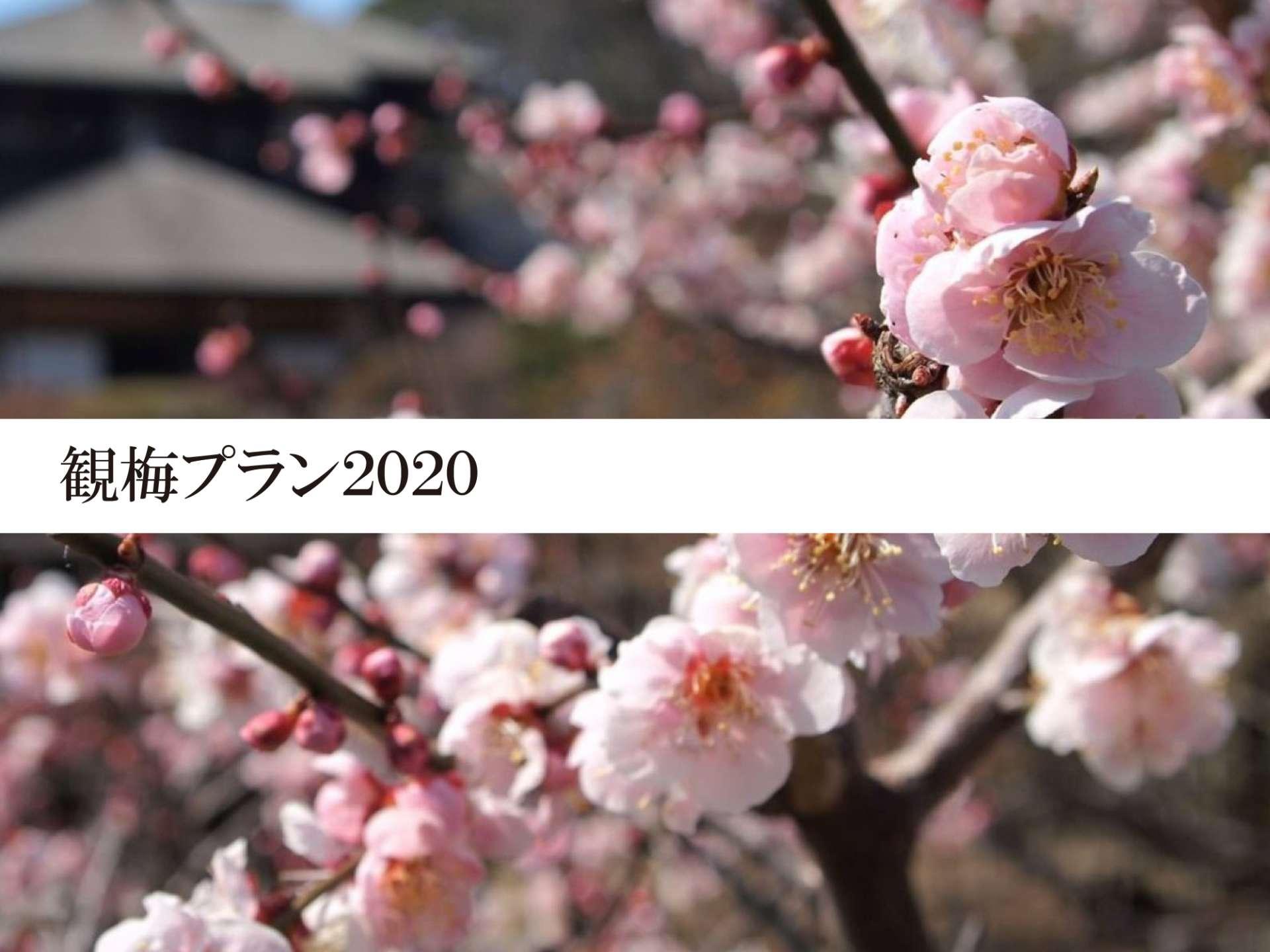 観梅ご宿泊プラン2020【朝食付】